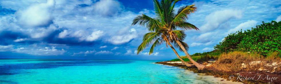 Bahia Honda State Park, Florida Keys, Palm Trees, Water, Ocean, Photograph, Drama, Blues, Beach, Storm, Morning
